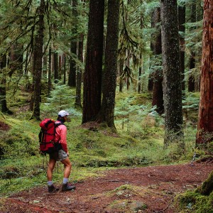 Hiking in Sol Duc River Valley