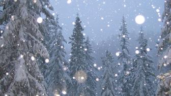 snow-falling